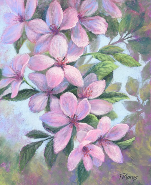 Tracey Maras, 'Cherry Blossoms Cascade', 2019, Painting, Pastel on archival paper, Springfield Art Association