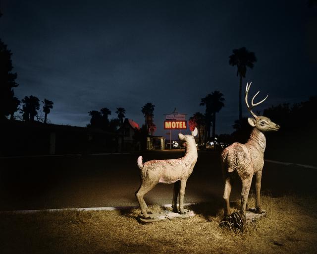 , 'Lawn Deer,' 2009-2012, Weiss Katz Gallery