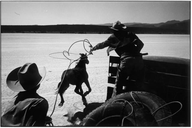 Elliott Erwitt, 'Reno, Nevada', 1960, Edwynn Houk Gallery