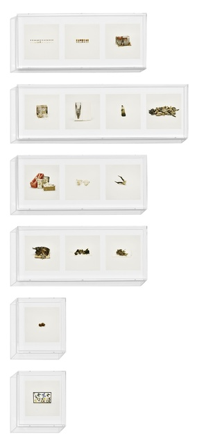 , 'Animal Corpses (Prohibited), Animal Parts (Prohibited), Animal Skeletons (Prohibited), Animal Specimens (Prohibited), Butterflies (Prohibited), Snails (Prohibited), ,' 2010, Jeu de Paume