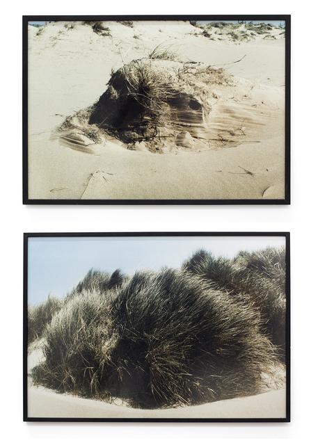 , 'Untitled (Diptych),' ca. 1980, Cosmocosa