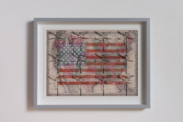, 'USA freedom,' 2015, Galleria Lorcan O'Neill