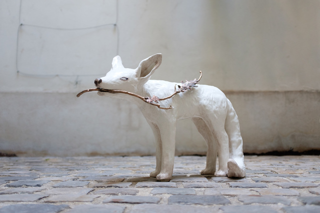 , 'Le Renard d'automne,' 2016, Antonine Catzéflis