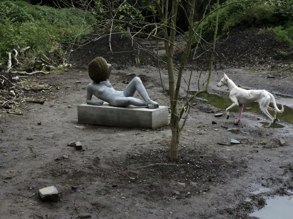 Untilled (Exhibition view, Kassel, 2012)
