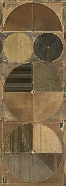 , 'Pivot Irrigation #4, High Plains, Texas Panhandle,' 2012, Flowers
