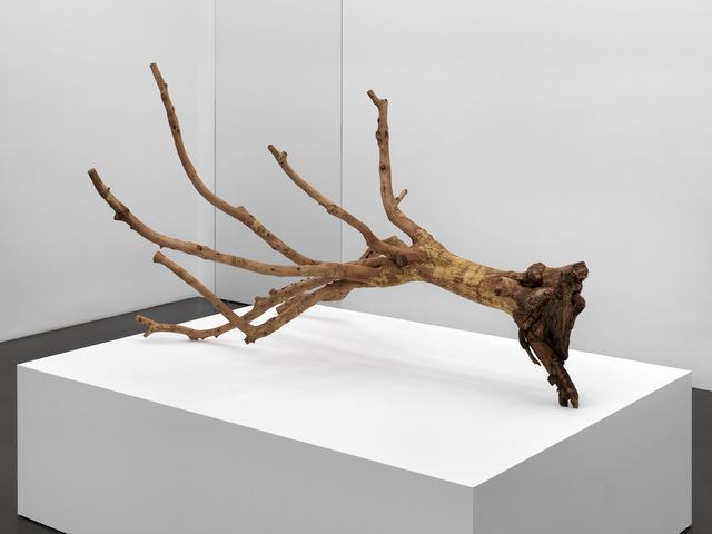, 'From the olive tree garden #5,' 2013, Meessen De Clercq