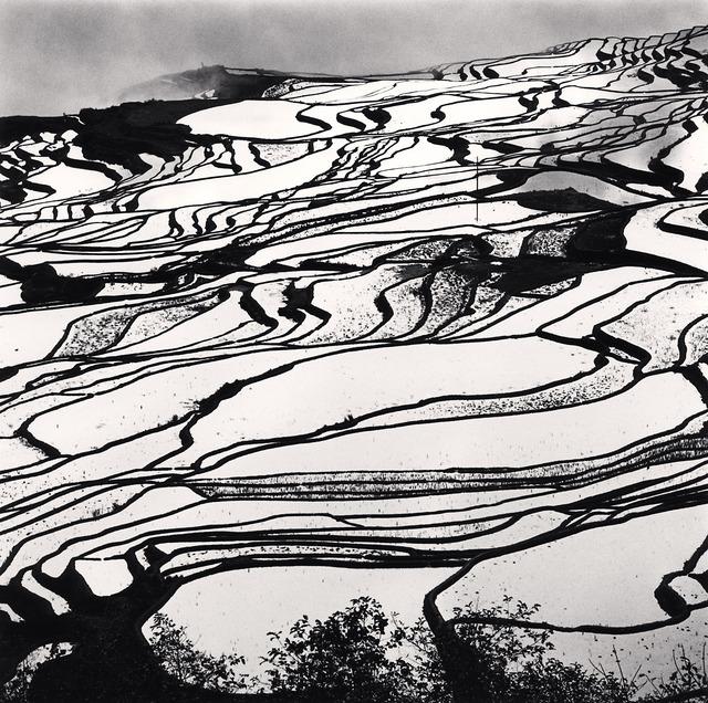 , 'Yuanyang, Study 2, Yunnan, China,' 2013, G. Gibson Gallery