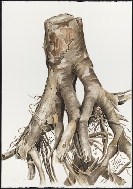 , 'ROOT II,' 2014, Traver Gallery
