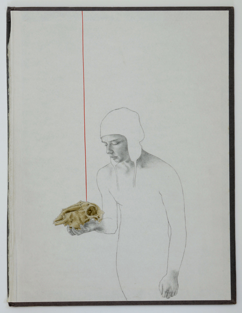 , 'Goldfinch 4,' 2015, Arusha Gallery
