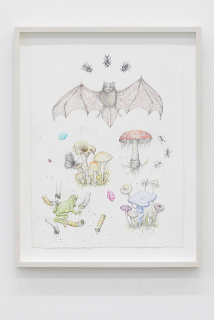 , 'Botanical Illustration for a Not-So-Distant Future 2 (Extinct Nocturnal Creatures and Alien Life Forms),' 2018, V1 Gallery
