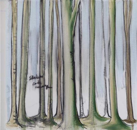 , 'Shadow,' 2013, Galerie Nathalie Obadia