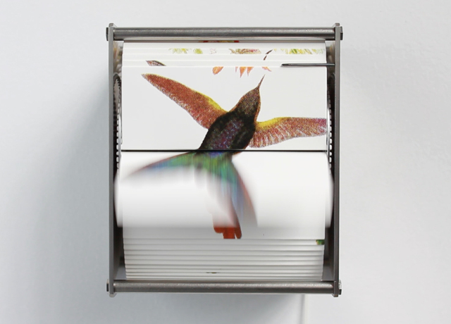 , 'Ornithology Ab,' 2014, Y Gallery