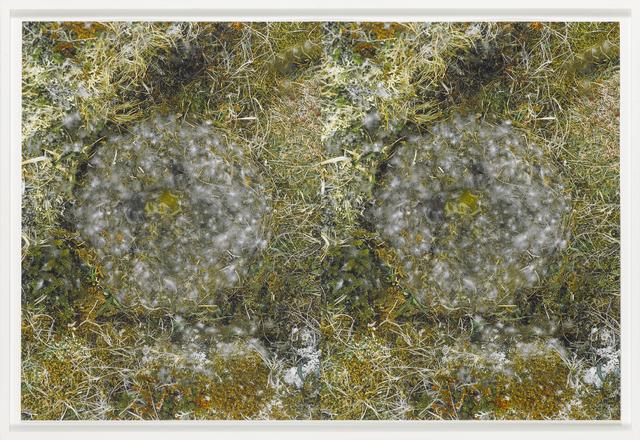 , 'To Nest #2,' 2001, Galleri Bo Bjerggaard