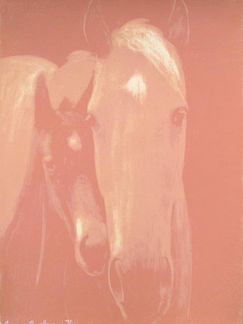 , 'Cherokee Village (pink),' 2004, Newzones