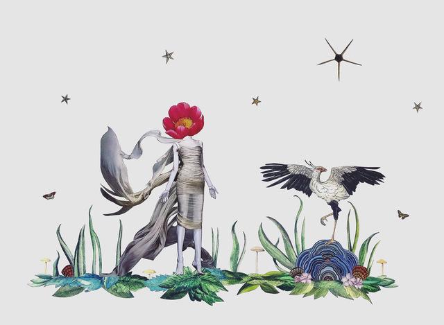 , 'Sagittarius Serpentarius,' 2019, Wolf & Nomad