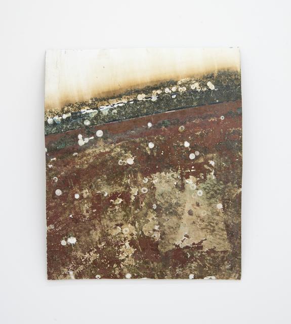 , 'Barnacles,' 2017, Kayne Griffin Corcoran