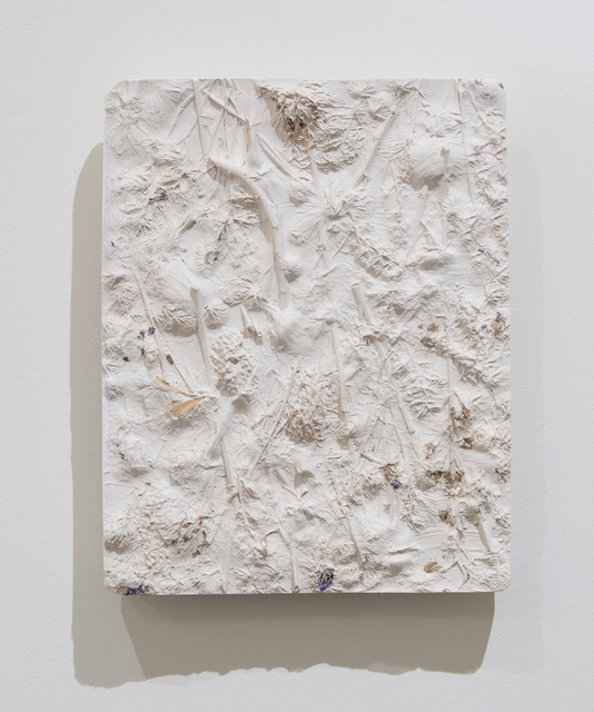 , 'Garden (Rose),' 2016, Kruger Gallery