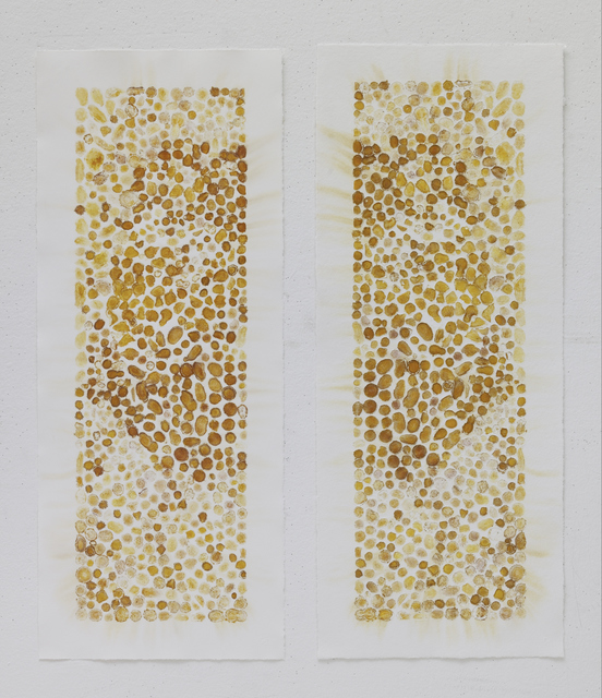 , 'Vegetable Prints – Yellow Ginger Natural Décalcomanie #3,' 2012, STPI