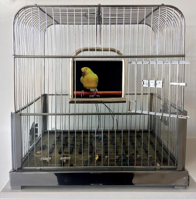 , 'Julia ,' 2017, Bernice Steinbaum Gallery