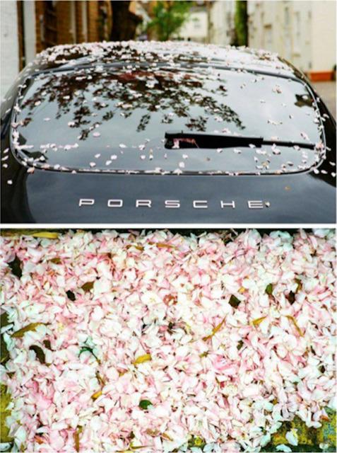 , 'Sakura Rain,' 2011, Imitate Modern