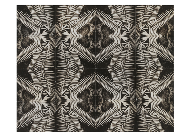 , 'Patterns from Nature Photographic Collage,' ca. 1945, Victoria and Albert Museum (V&A)