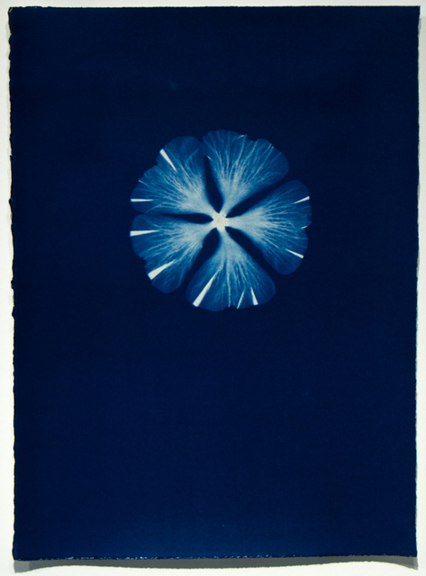 , 'Untitled F36,' 1998, ClampArt