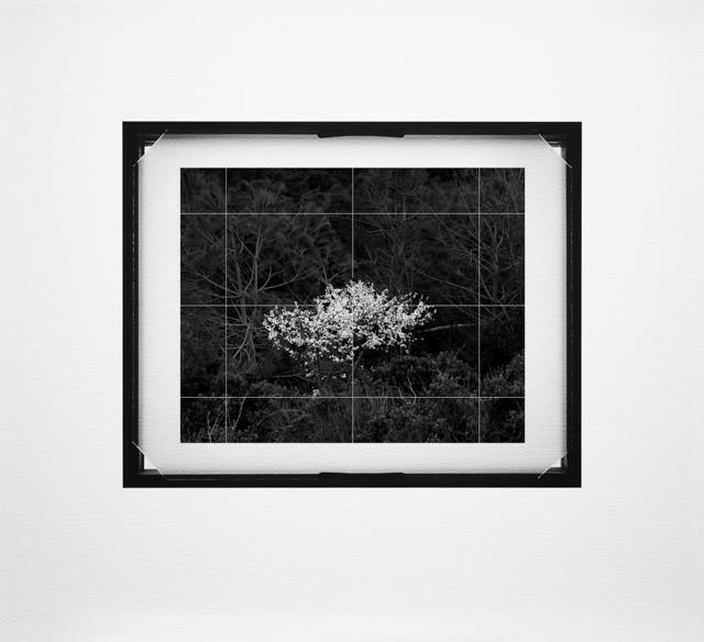 , 'Ground Glass #020,' 2015, Zilberman Gallery