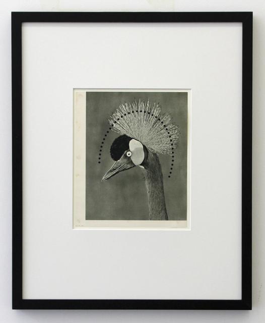 , 'Untitled,' 1995, Mini Galerie