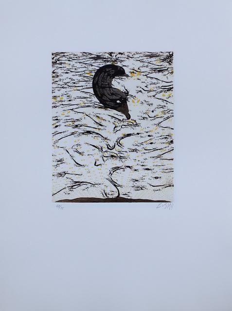 Zush, 'Sascape', 1994, Sylvan Cole Gallery