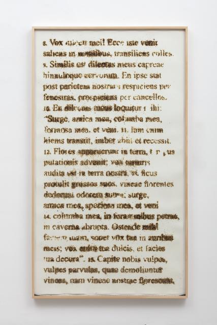 , 'Solomon´s song (Canticum Canticorum),' 2016, Galeria Marília Razuk