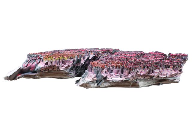 , 'Fragmento del Purgatory Planet —prueba recogida en el séptimo giro— cañon de las delicias, Instituto Arte y Maravillas,' 2018, Salón Comunal