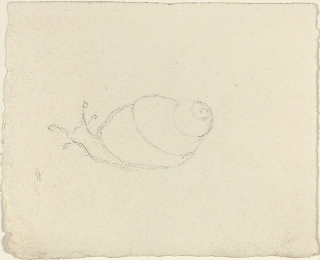 John Flaxman, 'Snails [recto and verso]', Drawing, Collage or other Work on Paper, Graphite, National Gallery of Art, Washington, D.C.