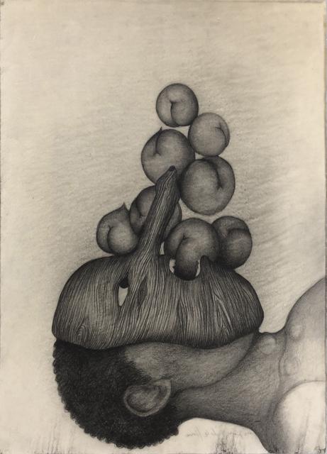 Sandra Vásquez de la Horra, 'Las Cosechas', 2015, VNH Gallery