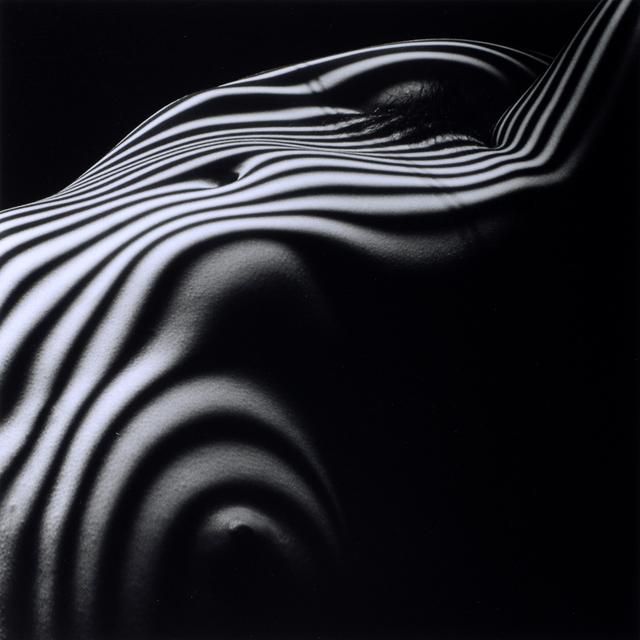 , 'Nu Zebre, New York 2013,' 2013, Odon Wagner Contemporary