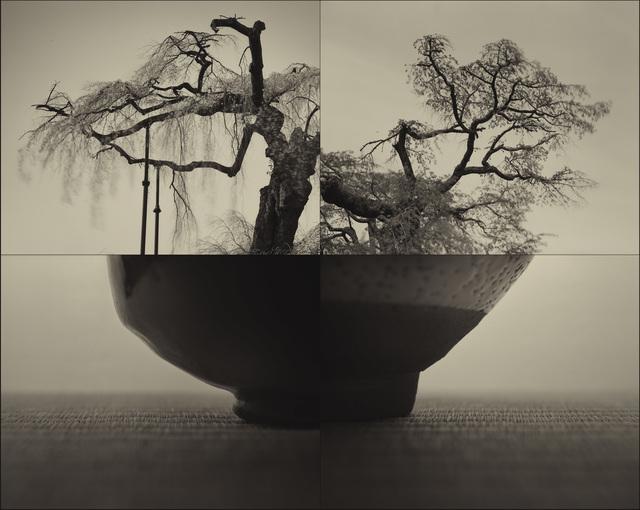 Keiichi Ito, 'Yoritomo - SAKURA (C934)', 2017, Micheko Galerie