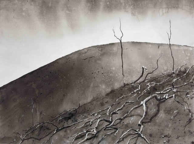 Emma Stibbon, 'Cinder Hill, Dead Trees', 2016, BASTIAN