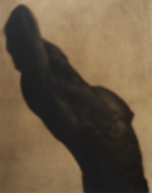 John Casado, 'Untitled 1697', 2002, Photography, Lith silver gelatin print, Andra Norris Gallery