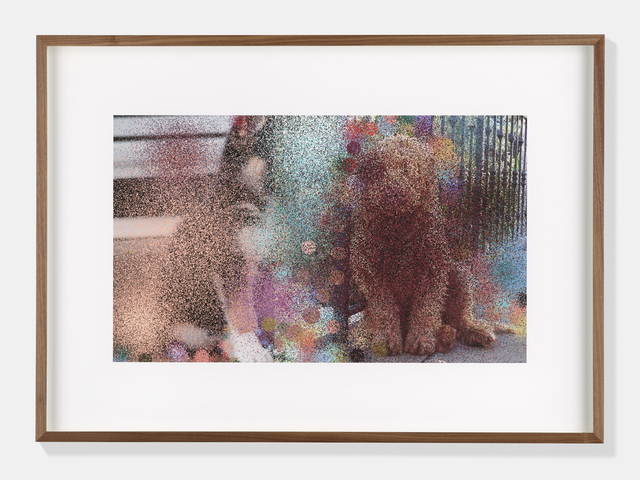 , 'Dogs III,' 2017, Sadie Coles HQ