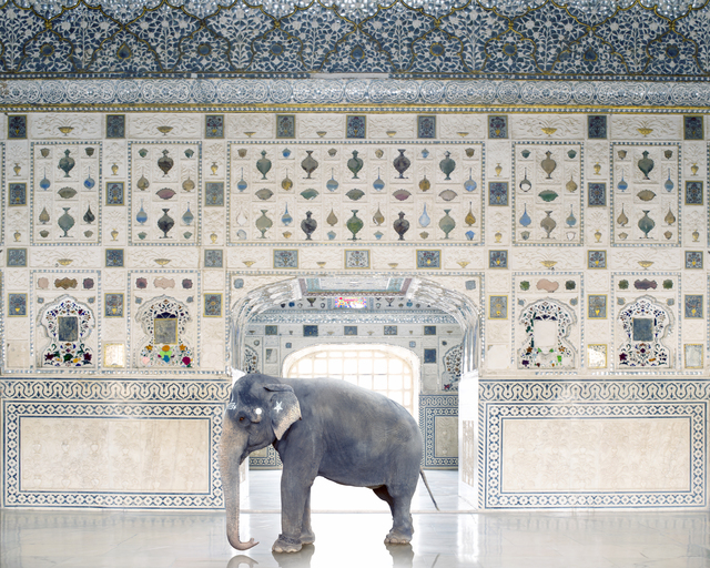Karen Knorr, 'Temple Servant, Amber Fort , Jaipur', 2014, Galerie Les filles du calvaire