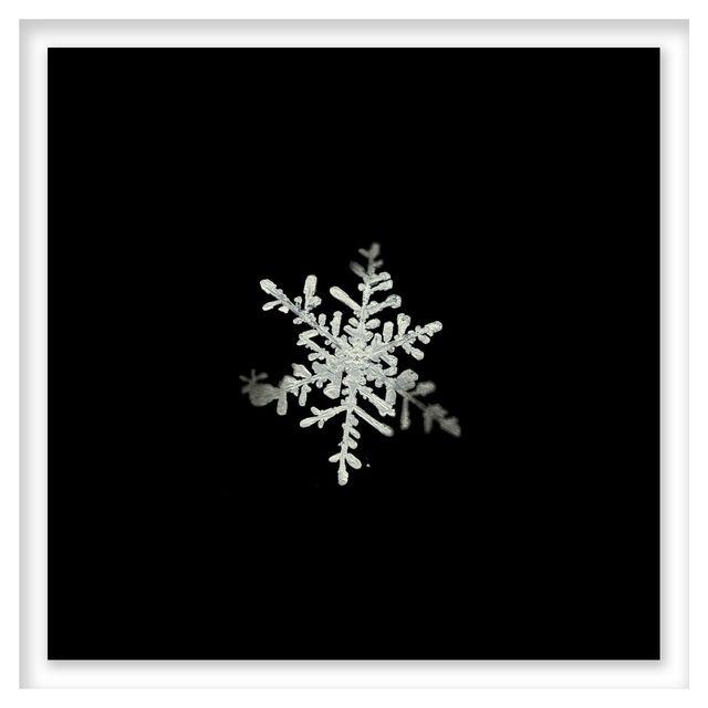 , 'Snow Study 5,' 2005, HackelBury Fine Art