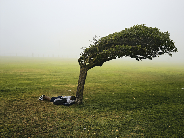 """, 'Green Point Common, Cape Town, from the series """"Kin"""",' 2013, PRISKA PASQUER"""