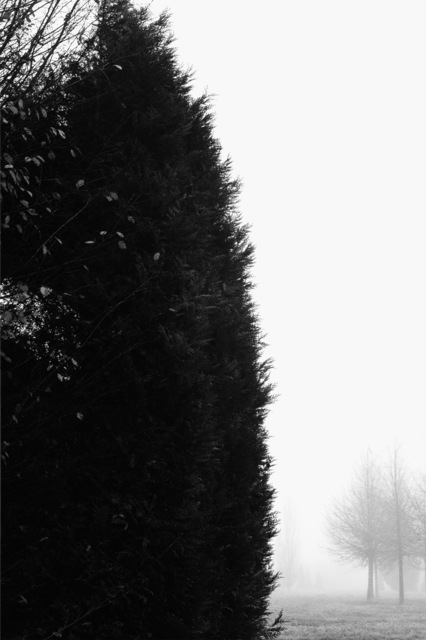 , 'trs2011097,' 2011, Gallery BK