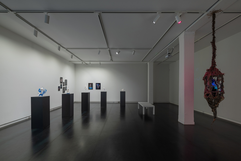Works by Pinar Yoldas and Iyvone Khoo in Absence of Myth. Photo by Mario Gallucci.