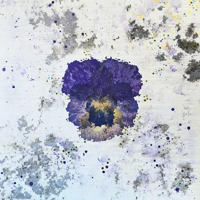 Anastasia Kimmett, 'Pansy', 2019, Diehl Gallery
