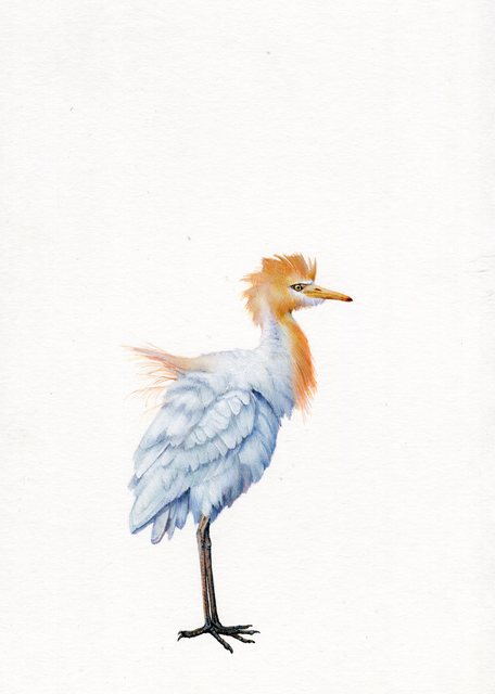 Dina Brodsky, 'Egret', 2019, Drawing, Collage or other Work on Paper, Watercolor and gouache on paper, Garvey | Simon
