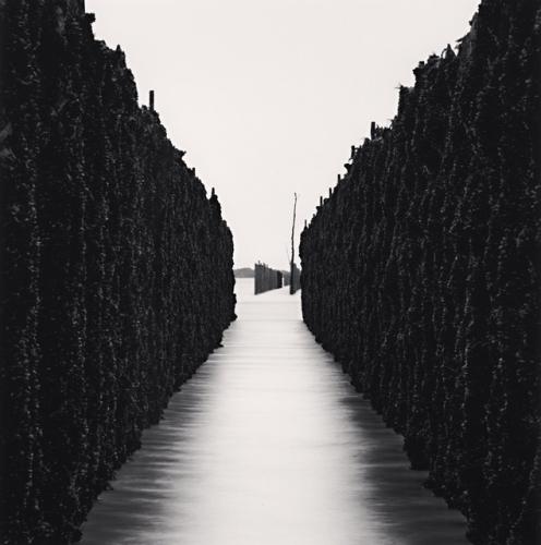 SHELLFISH WALLS, CHAUSEY ISLANDS, FRANCE, 2007