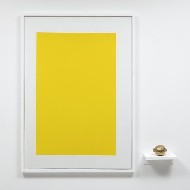 , 'objeto acrômico (limão),' 2018, Carbono Galeria