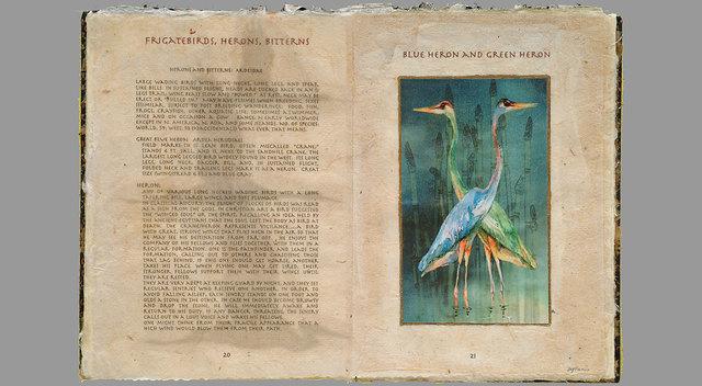 ", '""Book of Heron"",' , CK Art"