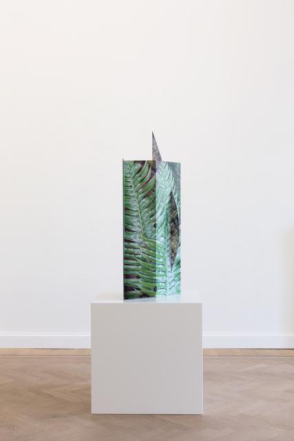 Letha Wilson, 'Pacific Fern Fold Steel ', 2019, GRIMM