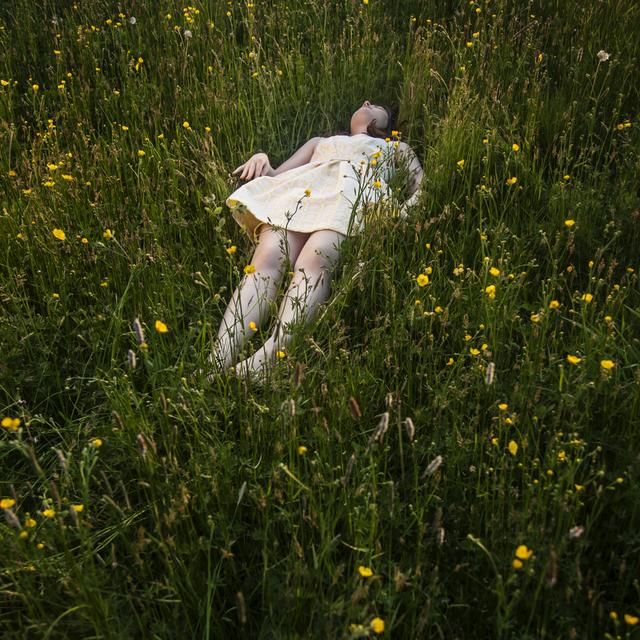 , 'Scout & The Found Bird, Rockport, Maine,' 2013, Kopeikin Gallery